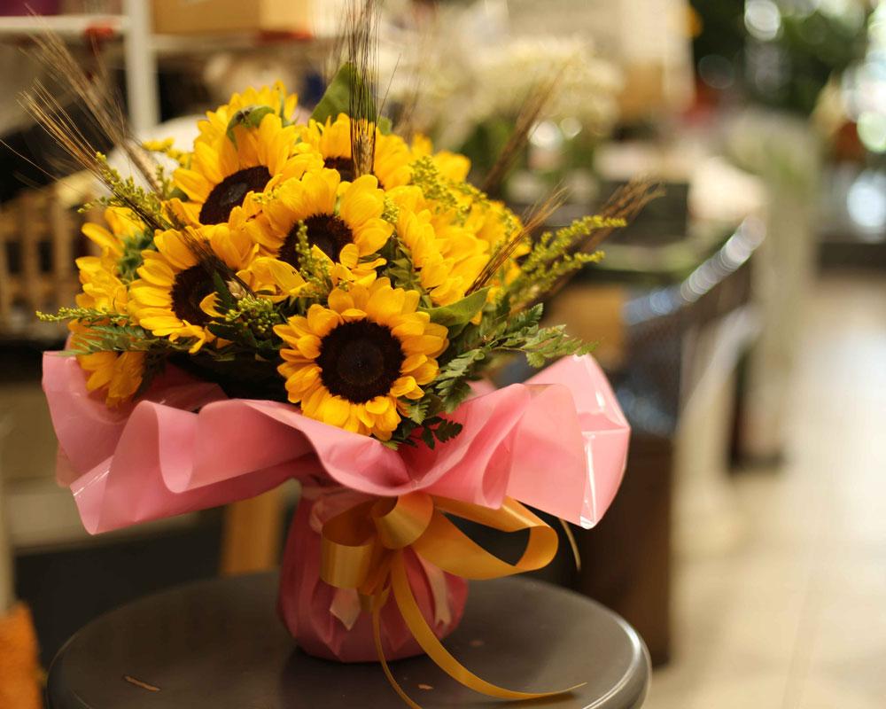 Fiori Del Mese Di Giugno giugno è arrivato, il fiore del mese è il girasole