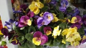 fiori finti (4)